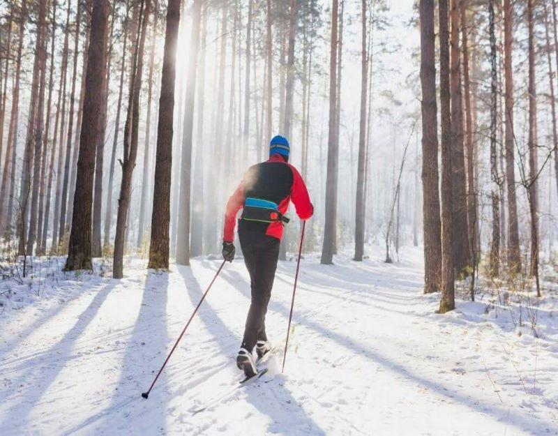 Guided Nordic Skiing Tours in Colorado