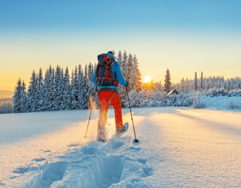 Snowshoeing Tours in Colorado