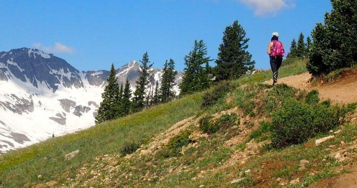Wildflower Hikes - Boreas Pass